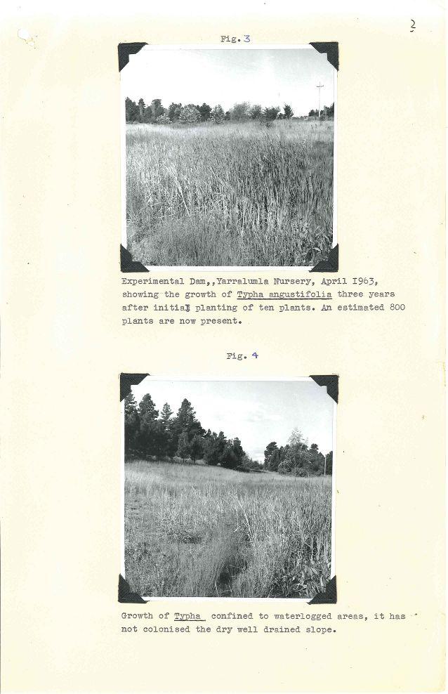 P&G 65-29 Pt.1 - Lakes Weed Control No 1 - Folio 02