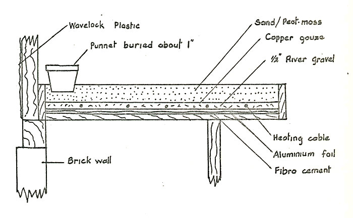 Fig 2: Section across bench in plastic house
