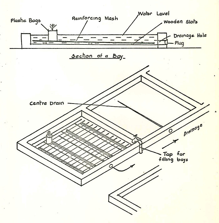 Fig 5: Sub-irrigation bays
