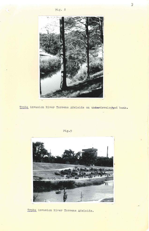 P&G 65-29 Pt.1 - Lakes Weed Control No 1 - Folio 03