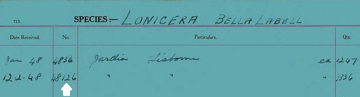 Sample Card Accession Number 48126