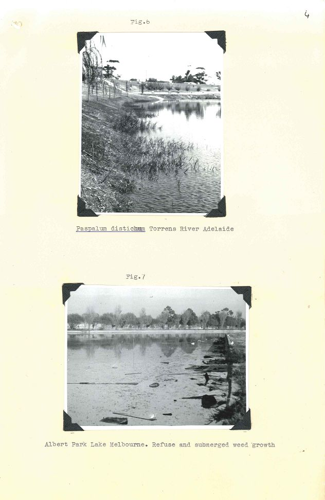P&G 65-29 Pt.1 - Lakes Weed Control No 1 - Folio 04