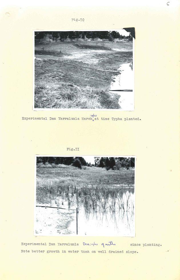P&G 65-29 Pt.1 - Lakes Weed Control No 1 - Folio 06